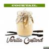 Alfaliquid Vanilla custard